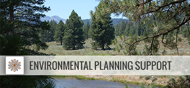 Environmental Planning Support